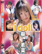 アイドール - I doll vol.7 樹若菜大全集