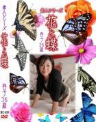 花と蝶 #459:春子36歳