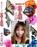 花と蝶 Vol.1348 由美33歳