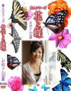 花と蝶 Vol.918 みゆき 30歳