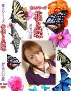 花と蝶 Vol.1022 静香 32歳