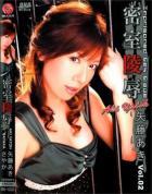 密室陵辱 vol.2:矢藤あき さやか