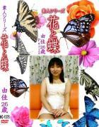 花と蝶-1375