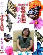 花と蝶-1378