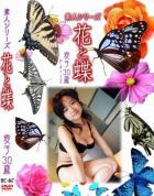 花と蝶 #467:愛子30歳