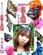 花と蝶 Vol.1351 早希27歳