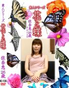 花と蝶 Vol.1356 佐奈恵26歳