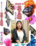 花と蝶 Vol.1357 晴美36歳