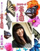 花と蝶 Vol.1359 夏穂25歳