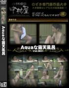 Aquaな露天風呂 Vol.901