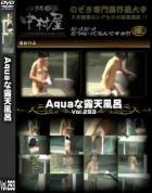 Aquaな露天風呂 Vol.293