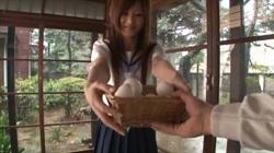SEDUCE ME 愛あいり 梅宮あん 瀬咲るな 石川鈴華 裏DVDサンプル画像