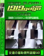 女達の羞恥便所盗撮 Vol.543