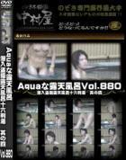 Aquaな露天風呂 Vol.880 潜入盗撮露天風呂十六判湯 其の四