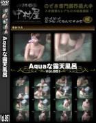 Aquaな露天風呂 Vol.951