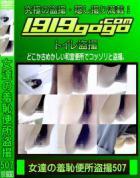 女達の羞恥便所盗撮 Vol.507