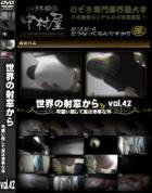 世界の射窓から ステーション編 Vol.42 可愛い顔して実は惨事な件