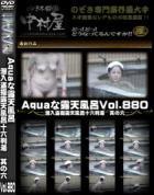 Aquaな露天風呂 Vol.880 潜入盗撮露天風呂十六判湯 其の六