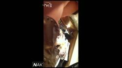 ハイビジョン盗撮!ショップ店員千人斬り!パンチラ編 vol.08 裏DVDサンプル画像
