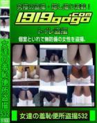 女達の羞恥便所盗撮 Vol.532