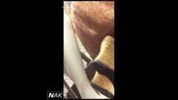 ハイビジョン盗撮!ショップ店員千人斬り!パンチラ編 vol.11 裏DVDサンプル画像