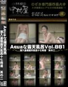 Aquaな露天風呂 Vol.881 潜入盗撮露天風呂十七判湯 其の二