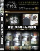 解禁 海の家4カメ洗面所Vol.03
