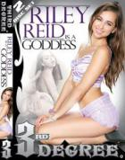 Riley Ried Is A Goddess (2枚組)