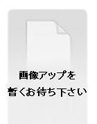 Tokyo Undes DJP125