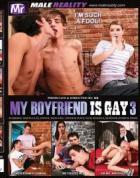 彼氏はゲイです Vol.3