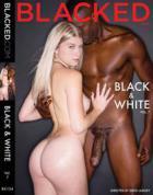 ブラック & ホワイト Vol.7