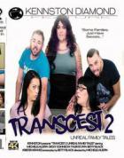 Transcest: アン アンリアル ファミリー テール Vol.2