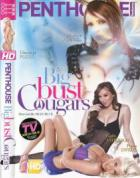 Penthouse Features: Big Bust Cougars