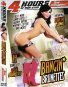 バンギン ブルネッツ (4時間DVD)