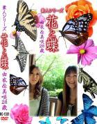花と蝶 Vol.1361 由衣 美咲28歳 - 無料アダルト動画付き(サンプル動画)