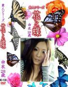 花と蝶 Vol.1338 由衣28歳 - 無料アダルト動画付き(サンプル動画)