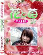 花と苺Jr Vol.888 いちか19歳 - 無料アダルト動画付き(サンプル動画)