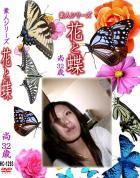 花と蝶 Vol.1293 尚32歳 - 無料アダルト動画付き(サンプル動画)