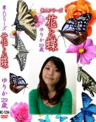 花と蝶 Vol.1294 ゆりか29歳 - 無料アダルト動画付き(サンプル動画)