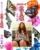 花と蝶 Vol.1300 由利30歳 - 無料アダルト動画付き(サンプル動画)