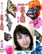 花と蝶 Vol.1307 操30歳 - 無料アダルト動画付き(サンプル動画)