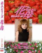 素人シリーズ 花と苺 Vol.304 - 無料アダルト動画付き(サンプル動画)