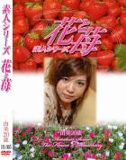 素人シリーズ 花と苺 Vol.305 - 無料アダルト動画付き(サンプル動画)