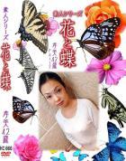 花と蝶 Vol.866 孝美42歳 - 無料アダルト動画付き(サンプル動画)
