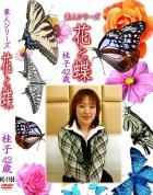 花と蝶 Vol.1168 桂子42歳 - 無料アダルト動画付き(サンプル動画)