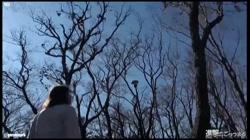 【個撮4】県立K2現役モデルパイパン② 野外露出で生ハメ - 無料アダルト動画付き(サンプル動画) サンプル画像4