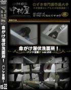 命がけ潜伏洗面所! パンツ全開! Vol.22 - 無料アダルト動画付き(サンプル動画)