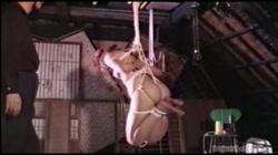 志摩伝説 「SMフェチ 肉尻奴隷」 - 無料アダルト動画付き(サンプル動画) サンプル画像12