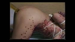 志摩伝説 SMドキュメント4 女体針貫通 サンプル画像