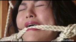 志摩伝説「熟女鞭責め」 - 無料アダルト動画付き(サンプル動画) サンプル画像18